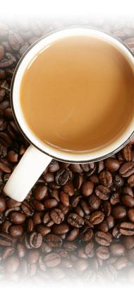 現烘咖啡專門店,秉持著輕鬆寫意地煮出好咖啡的理念,實現了不受時地限制的味覺體驗,提供消費者特選的精緻休閒食品<br /><br />精選現烘咖啡,季節限定,免費優惠升級,大杯容量買一送一,每日限量供應1000組